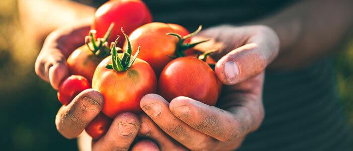Agricultura sostenible casos de éxito