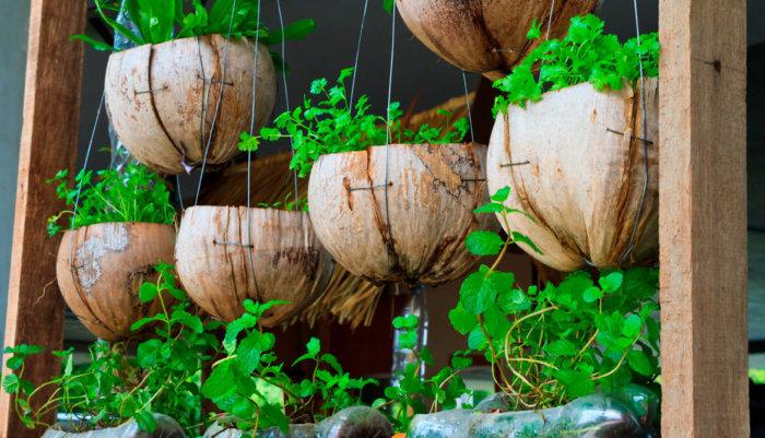 Huertas caseras: 12 consejos para llevar la permacultura a tu hogar