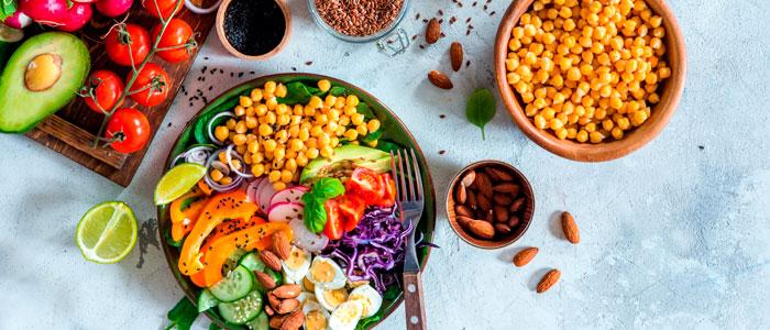 Guia proteína vegetal